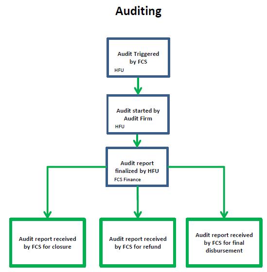 Project Audit | CBPF GRANT MANAGEMENT SYSTEM (GMS) - HOME